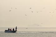 31st Aug 2020 - Fishing