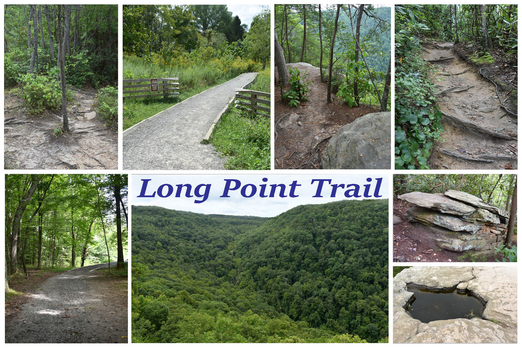 Long Point Trail, New River Gorge, WV by homeschoolmom