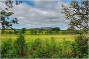 31st Aug 2020 - More from the Ribble Valley