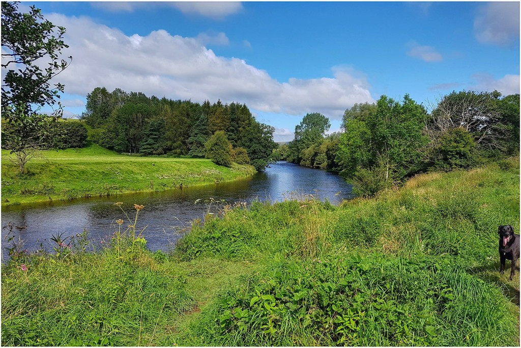 A stroll by the River Hodder by lyndamcg