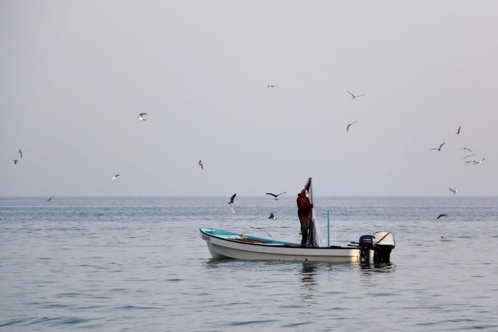 Fishing #2 by ingrid01