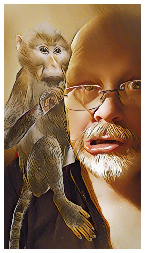 Monkey Business... by bankmann