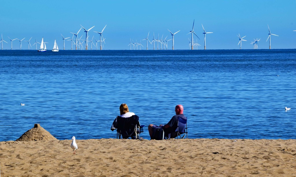 looking at wind farm by ianmetcalfe