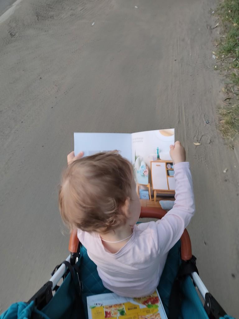 день знаний by inspirare