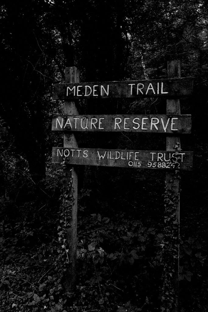 The Meden Trail by allsop