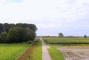 2nd Sep 2020 - Country view from top of the dike.