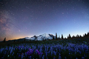 2nd Sep 2020 - Starry Night