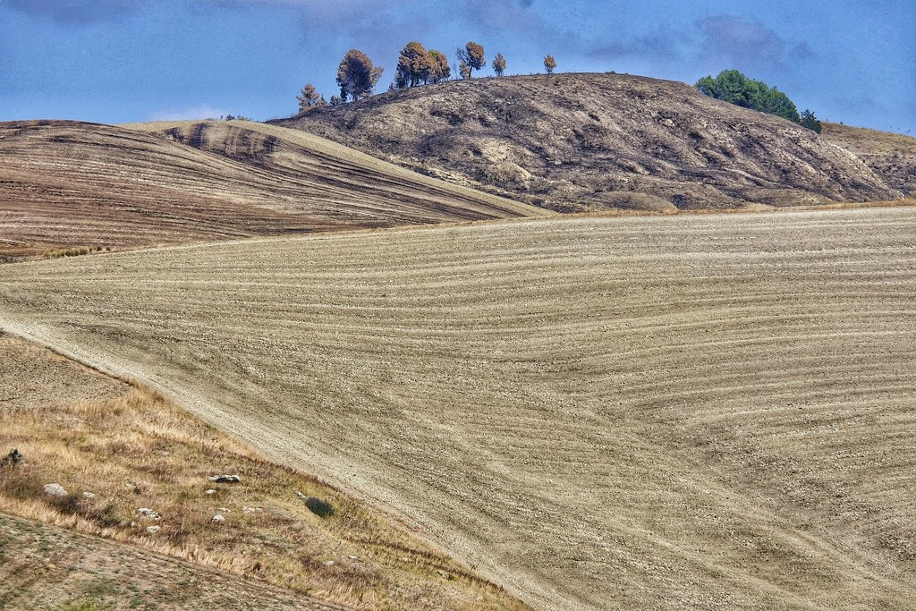 Basilicata Countryside  by caterina