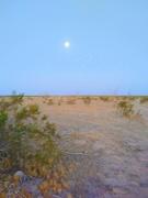3rd Sep 2020 - Moonset in the Desert