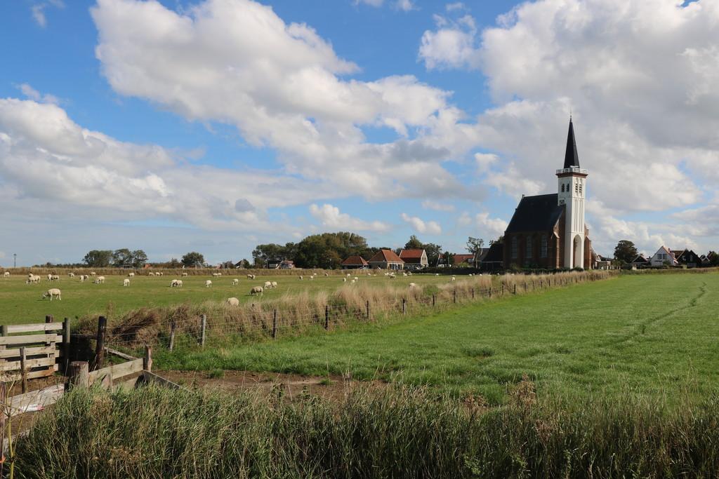 Texel by momamo