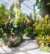 2nd Sep 2020 - San Antonio Botanical Gardens