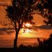 Leaning Sunset by kareenking