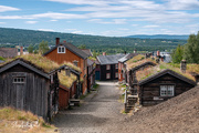 4th Sep 2020 - From our trip to Røros