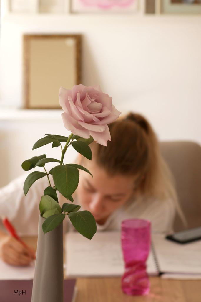 Studying by cherrymartina