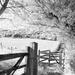 Kissing Gate by fbailey