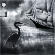 5th Sep 2020 - The fog is lifting. The heron keeps watch.