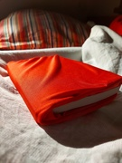 """5th Sep 2020 - Time to """"red"""" in my bed"""