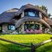 Mushroom House by rosiekerr