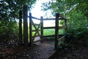 3rd Sep 2020 - Sept 3rd The Gate