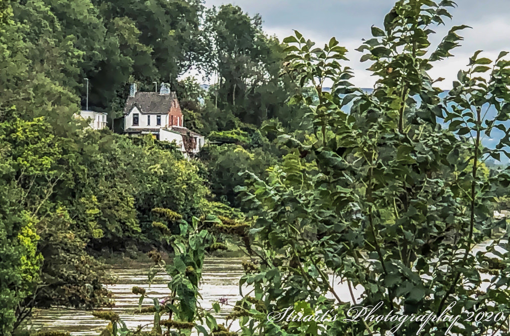 House in the trees by stuart46