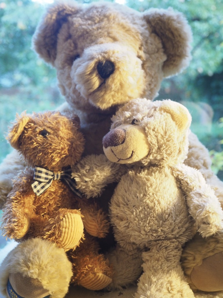 Teddybears by jacqbb