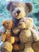 7th Sep 2020 - Teddybears