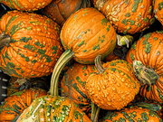 7th Sep 2020 - Pumpkin