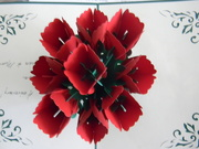 8th Sep 2020 - Flowers in Card