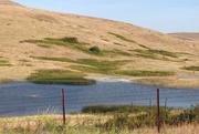 2nd Sep 2020 - Bison Range View