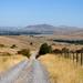 Montana Rural Road