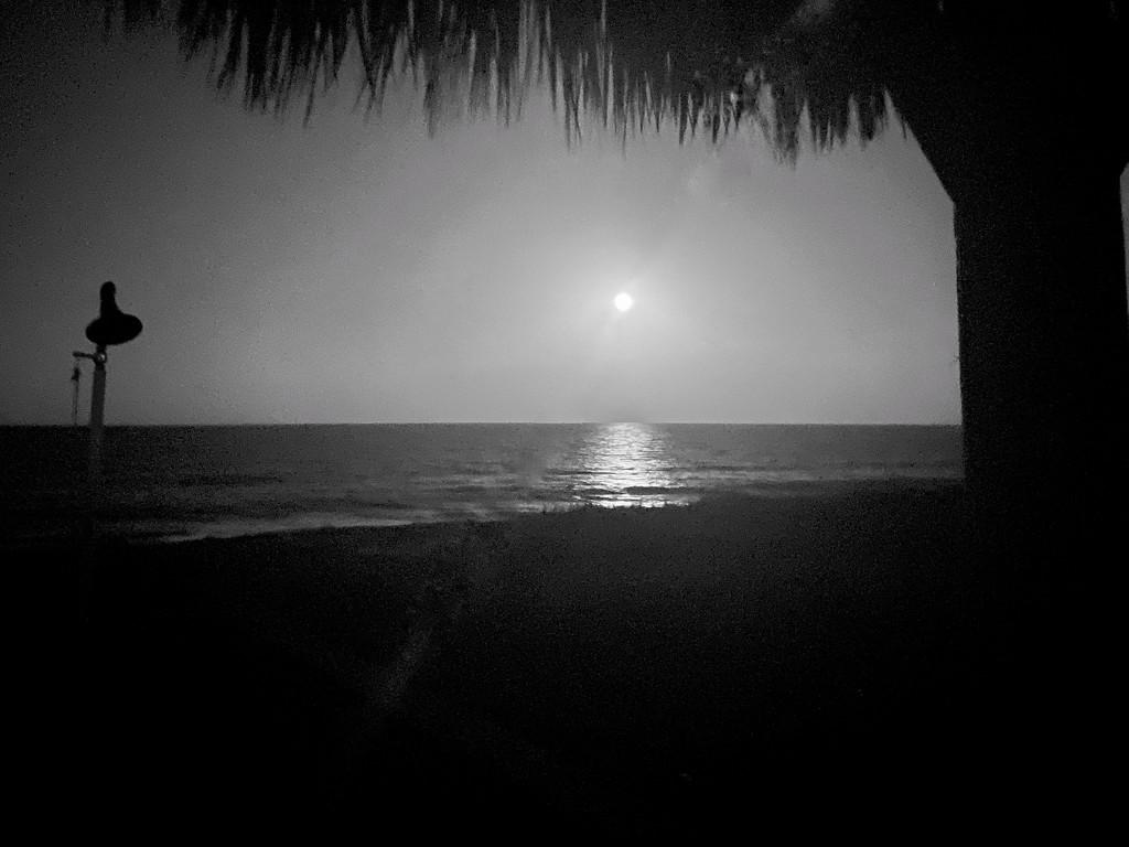 Southern moon by joesweet