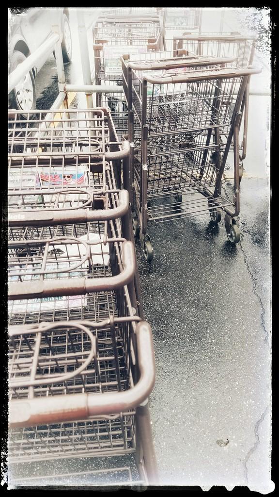 Shopping carts by randystreat