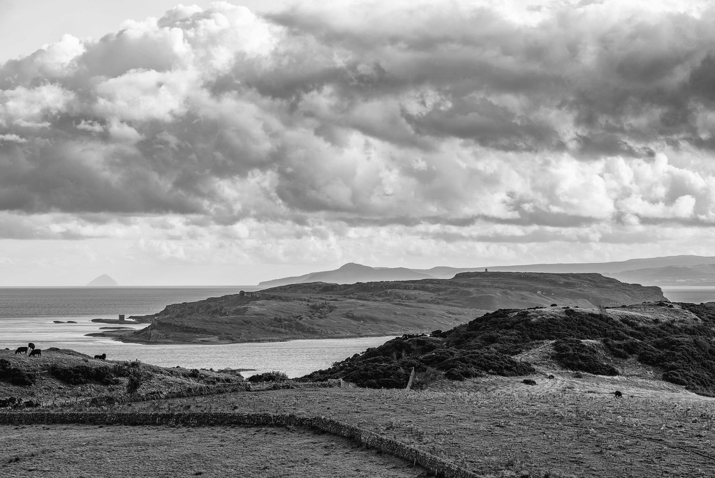 Little Cumbrae. by gamelee
