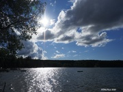 9th Sep 2020 - Late Afternoon Sun