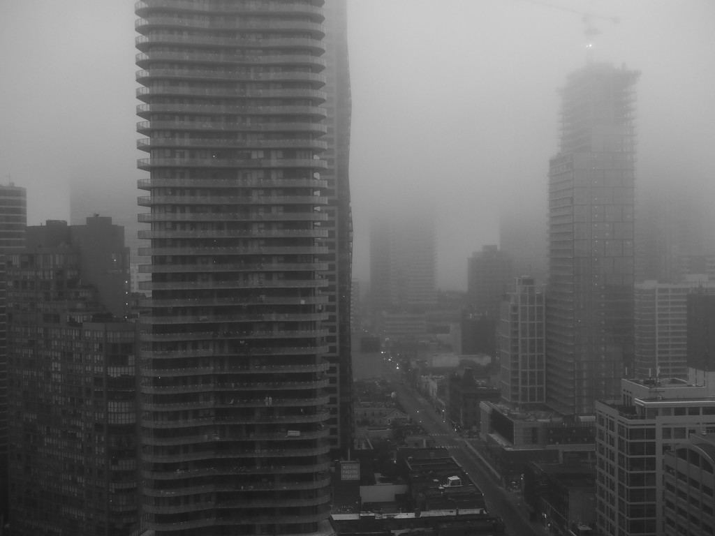 grey day by northy