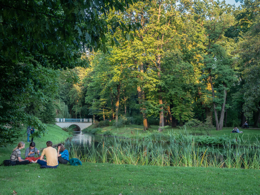 In the evening in the park by haskar