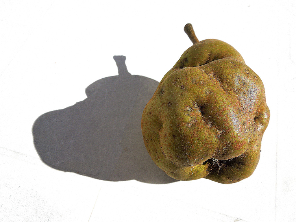 The shadow of a pear by etienne