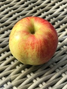 10th Sep 2020 -  Just One Apple