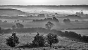 10th Sep 2020 - Autumn Mists