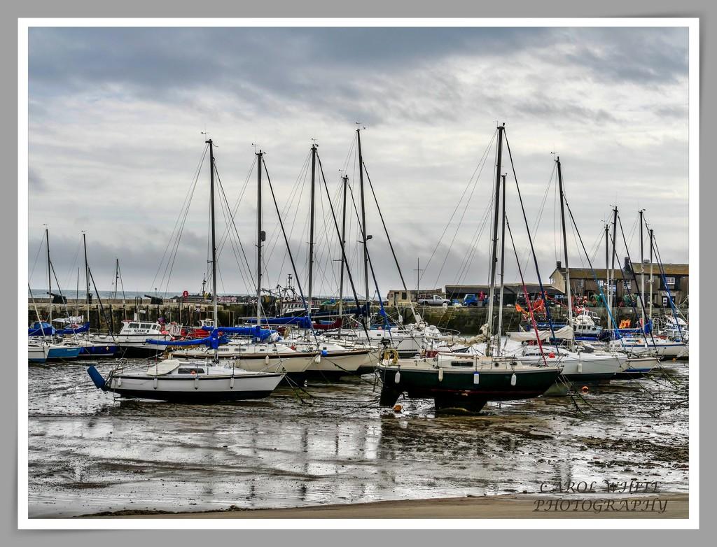 The Harbour,Lyme Regis by carolmw