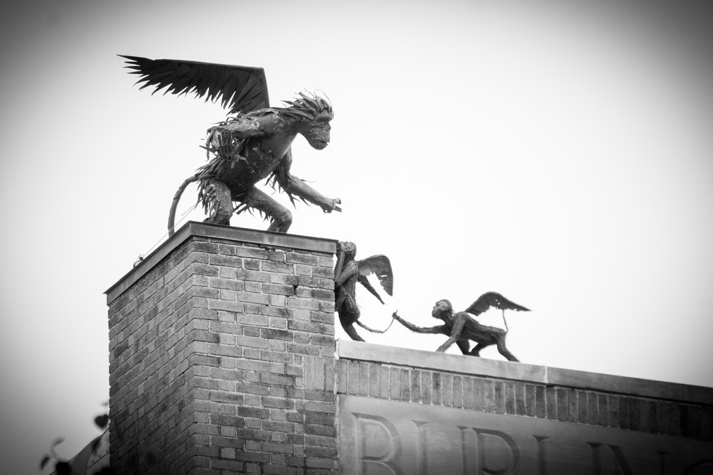 Flying Monkeys by bmaddock