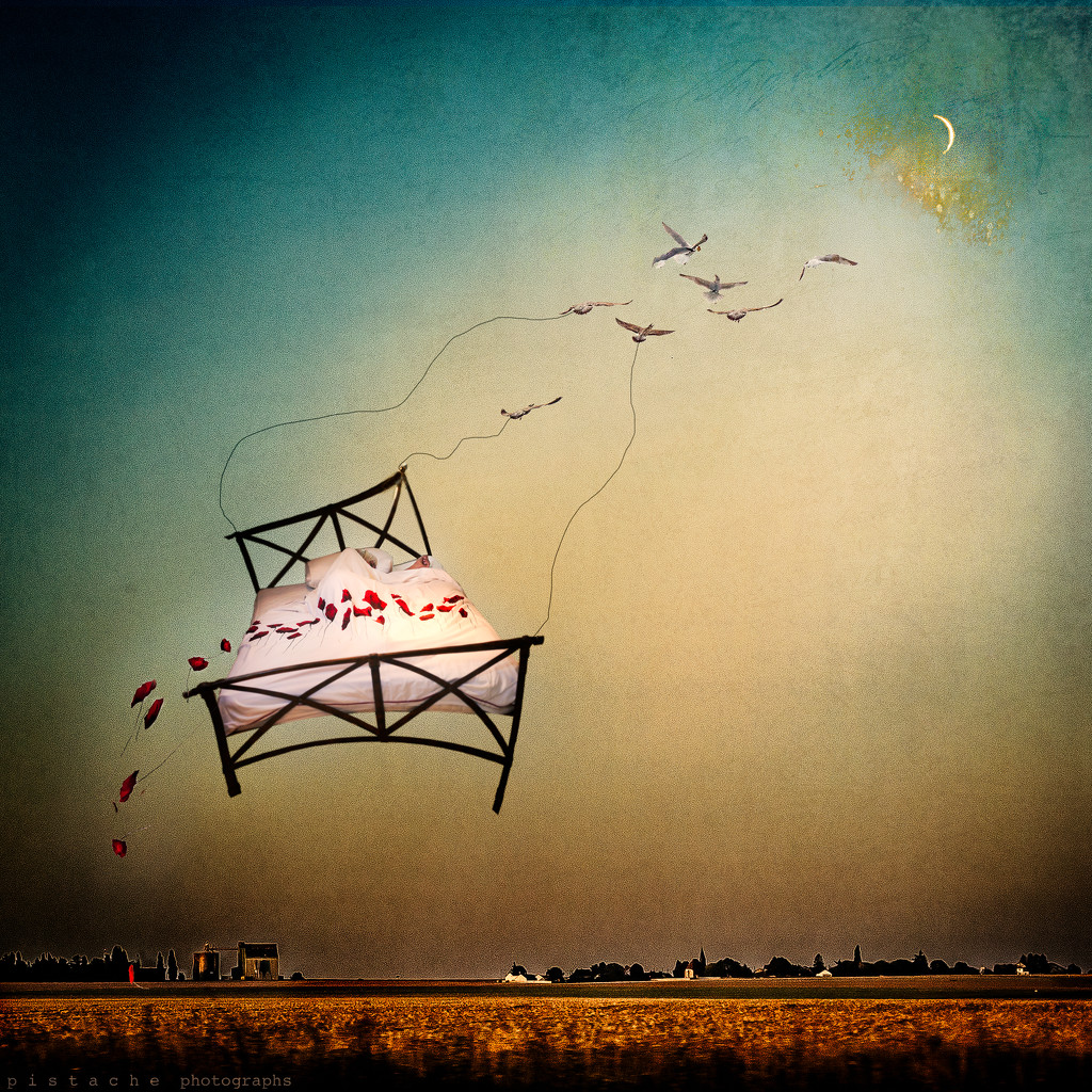 flying is done largely with the imagination by pistache