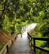 "12th Sep 2020 - Bridge over ""Sweetwater Creek"""