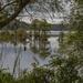 Sunken Meadow Pond by timerskine
