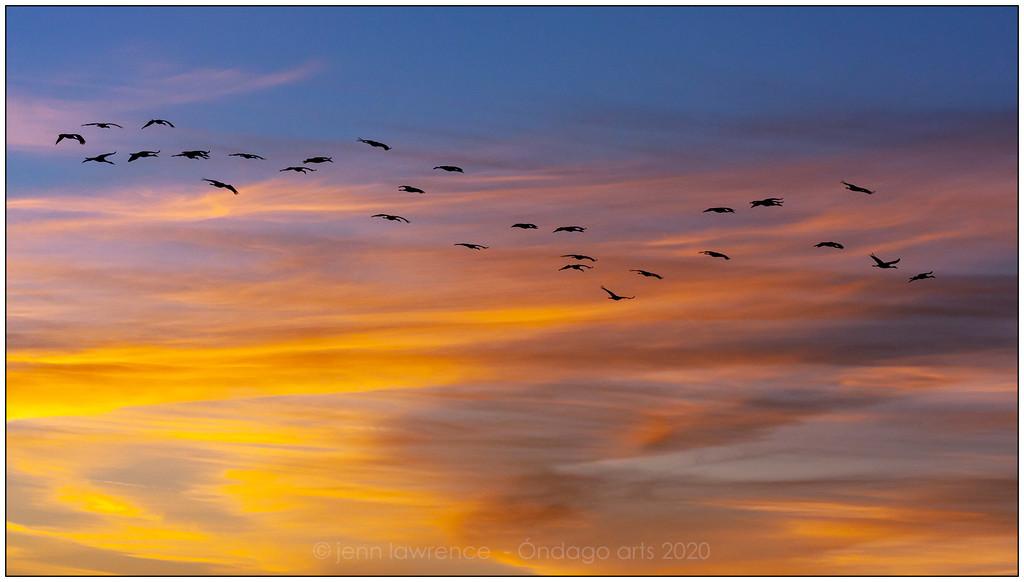 Evening Flight by aikiuser