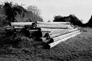 13th Sep 2020 - Old Telegraph poles