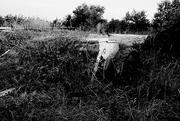 13th Sep 2020 - Farm Graveyard 2