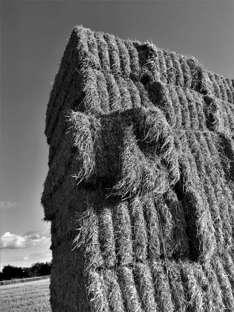 Straw bale stack by ajisaac