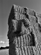 5th Sep 2020 - Straw bale stack