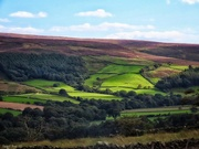 13th Sep 2020 - Moorlands edge